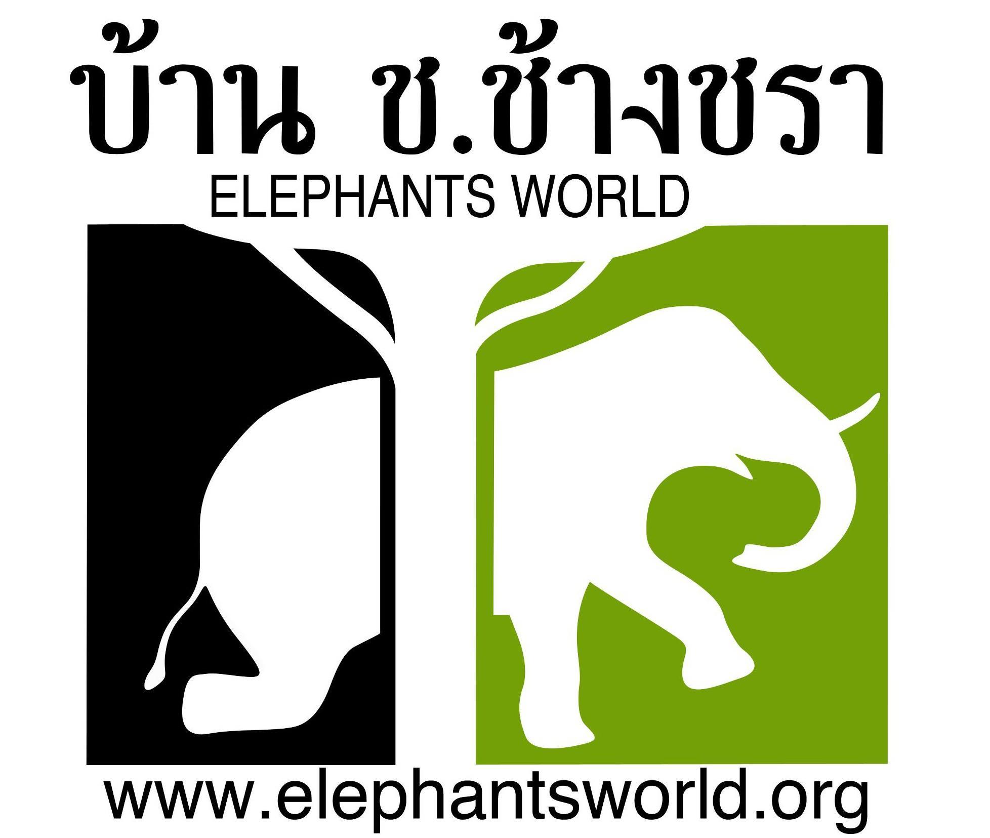 เมื่อวันที่ 2 พฤศจิกายน 2556 คุณปัญญา เศรษฐโภคิน ประธานบริหาร บริษัท บลู แอนด์ ไวท์กรุ๊ป ได้มอบรถบรรทุกให้กับมูลนิธิ บ้าน ช.ช้างชรา ไว้เพื่อบรรทุกอาหารให้กับช้างที่อยู่ในความดูแลของ บ้าน ช.ช้างชรา จังหวัดกาญจนบุรี ที่มีทั้งช้างแก่ ช้างป่วย และช้างเร่ร่อน ที่ไม่สามารถทำงานได้ ทั้งนี้อยากให้ทุกคนหันมาดูแลช้างกันมากขึ้น ซึงช้างถือได้ว่าเป็นสัตว์คู่บ้านคู่เมืองของประเทศไทยเรามาแต่สมัยโบราณ